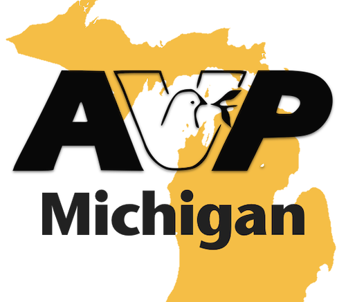 AVP Michigan Logo